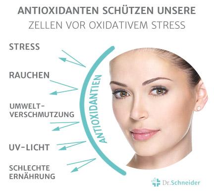 teaser_skin_Antioxidantien